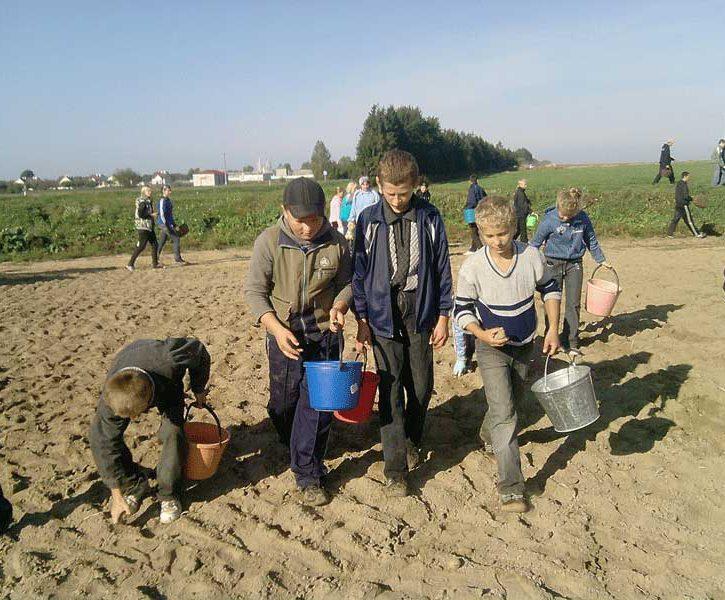 child_labour_in_belarus.jpg