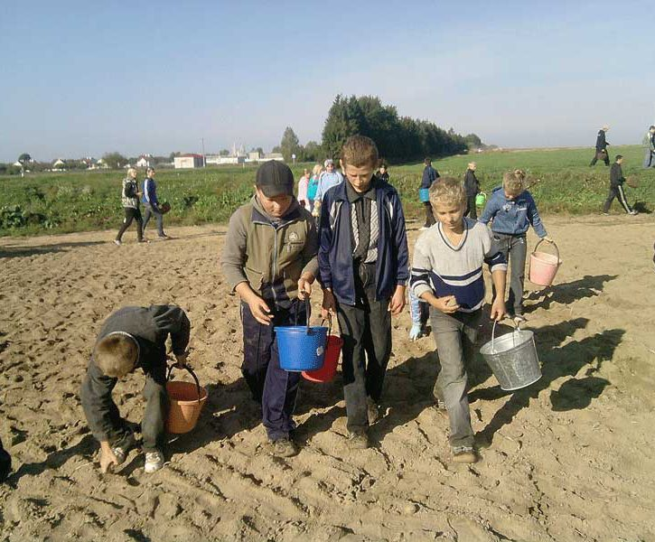 child_labour_in_belarus.jpg