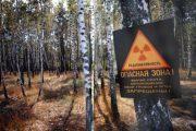 charnobyl.jpg